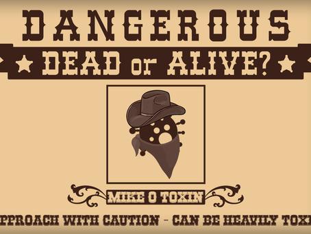 Is Mould Dangerous: Dead or Alive?