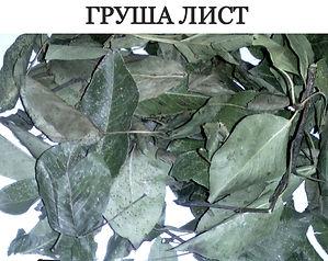 ГРУША ЛИСТ