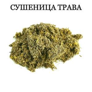 СУШЕНИЦА ТРАВА