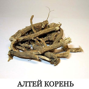 Алтей корень
