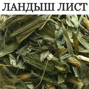 ЛАНДЫШ ЛИСТ