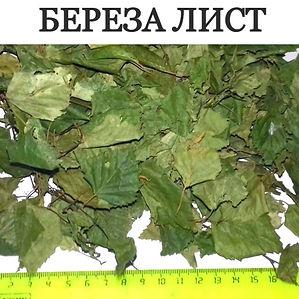 БЕРЕЗА ЛИСТ