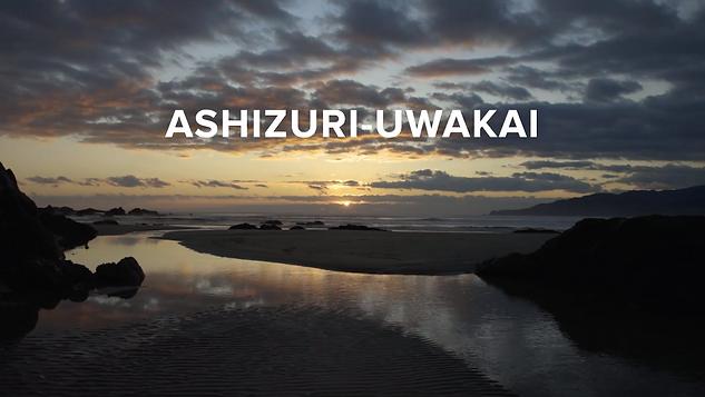 National Parks of Japan - Ashizuri - Uwakai