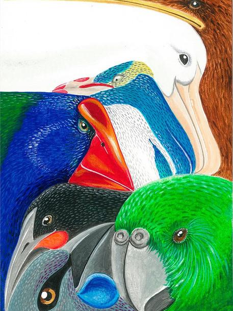 Squishy Squashy Birds