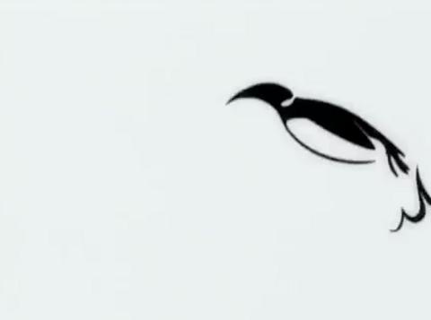 WWF - Antarctica