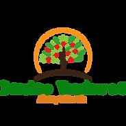 Danico Ventures Ltd Logo