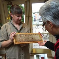 Katharina Davitt with honey frame