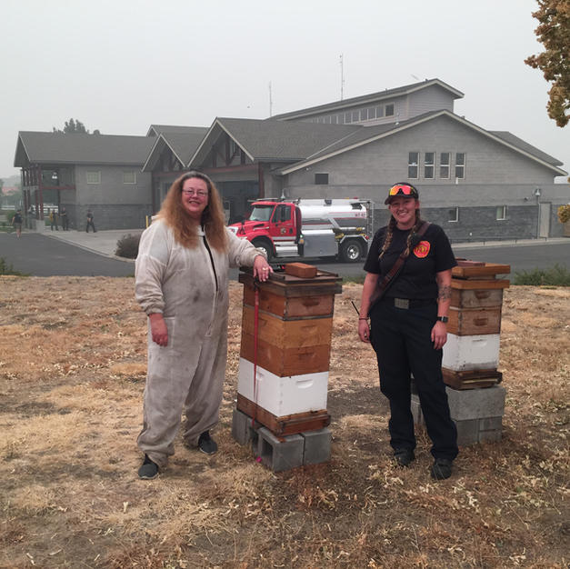 Bees Are Alive at Fire House 5