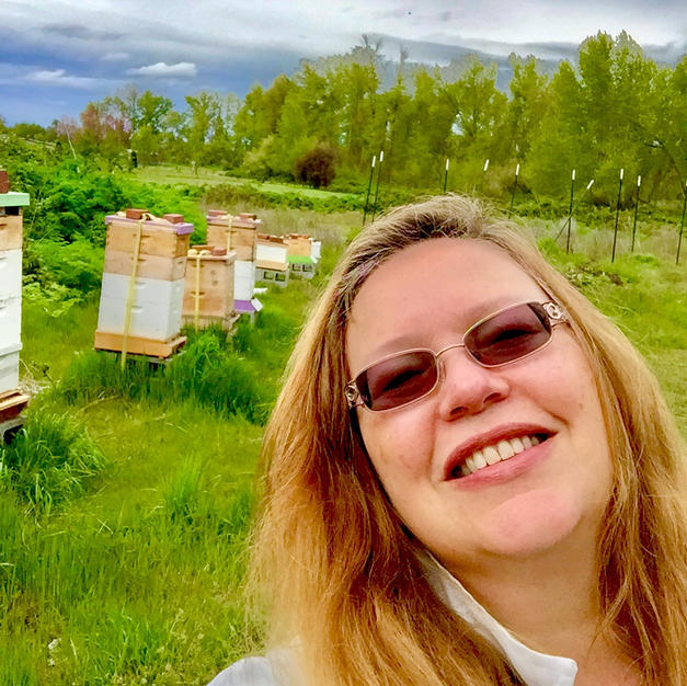 Our Apiary in Phoenix Before the Fire