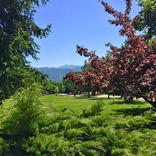 Grizzly Peak Winery lawn.jpg