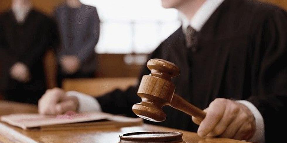 I CURSO BÁSICO DE SEGUROS DE SEGURO GARANTIA JUDICIAL & SINISTROS - AO VIVO