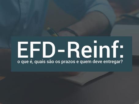 LEIAUTES DE INFORMAÇÕES ACESSÓRIAS (EFD_REINF E ECF)