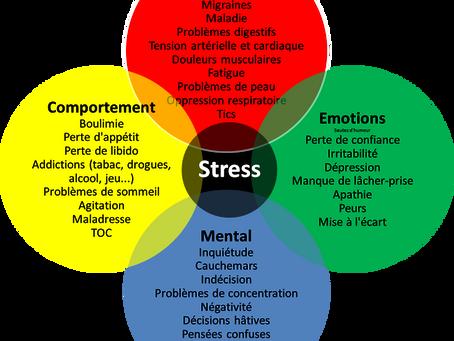 Nos ventouses contre le Stress