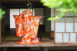 色打掛 朱に鶴と花