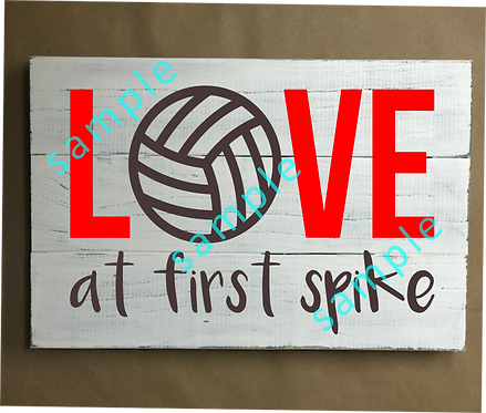 Private Kids - Volleyball Love at first Spike - 12x16