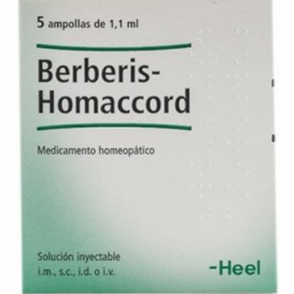 BERBERIS - HOMACCORD AMPOLLA