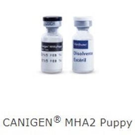 CANIGEN MHA2 PUPPY