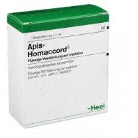 APIS-HOMACCORD AMP X 1.1 ML