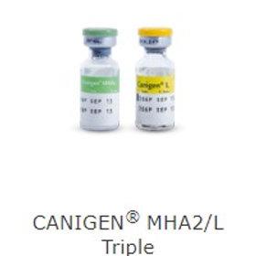 CANIGEN MHA2/L TRIPLE 1 DOSIS