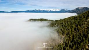 Tahoe Fog