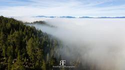 Tahoe Fog 2