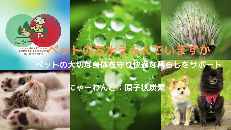 ピンク 黒 母の日 Blogバナー (5).png