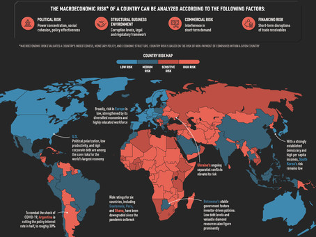 The World Macroeconomic Risk Map in 2020