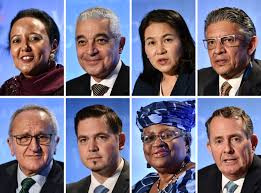 The WTO Leadership Race