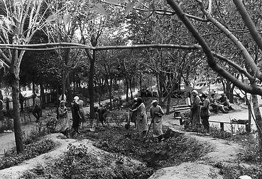 армавир-горпарк-1942.jpg