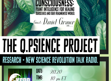 9.11.20, Daniel Grauer: Psychedelic Consciousness
