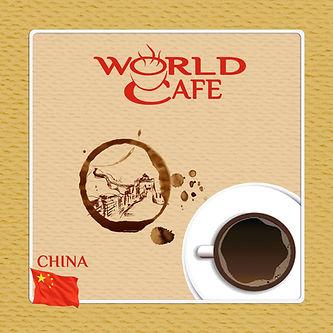 Tarık Agansoy World Cafe China