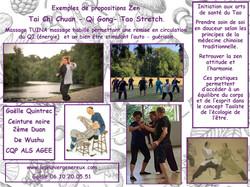 Exemples de propositions  Zen  2019