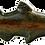 Thumbnail: Fish Medium Soapstone Carving Kit