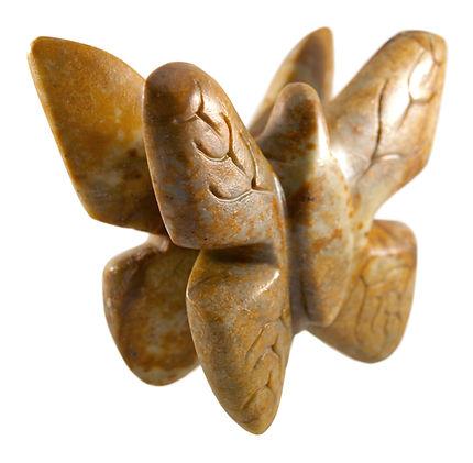 butterfly-1c.jpg