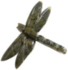 small_dragonfly.jpg