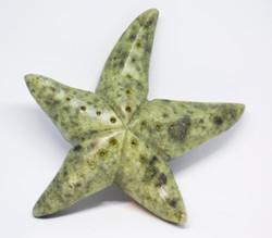 Soapstone Star fish Sculpture Carving Kit