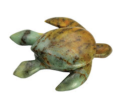 medium_turtle.jpg