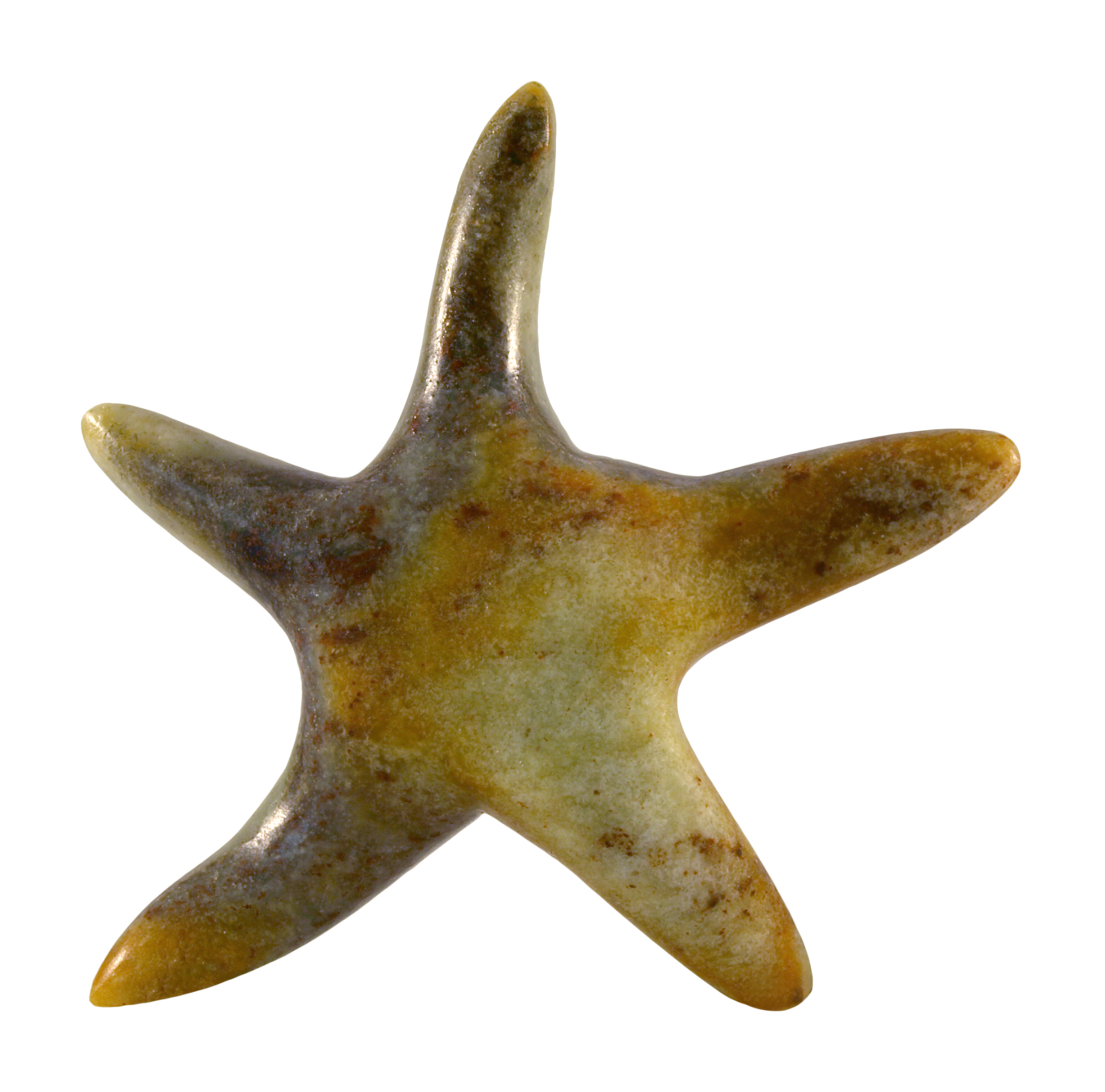 Soapstone Starfish Sculpture Carving Kit