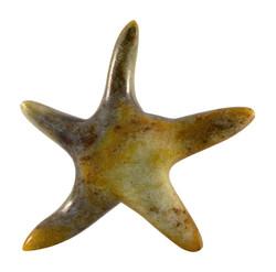 Soapstone Starfish Sculpture Carving Kit