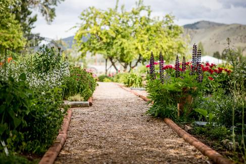 Jacksons Garden-0198.jpg