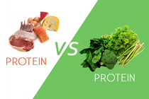 THE DIFFERENCE BETWEEN PLANT-BASED AND ANIMAL-BASED PROTEIN WHEN IT COMES TO CANCER
