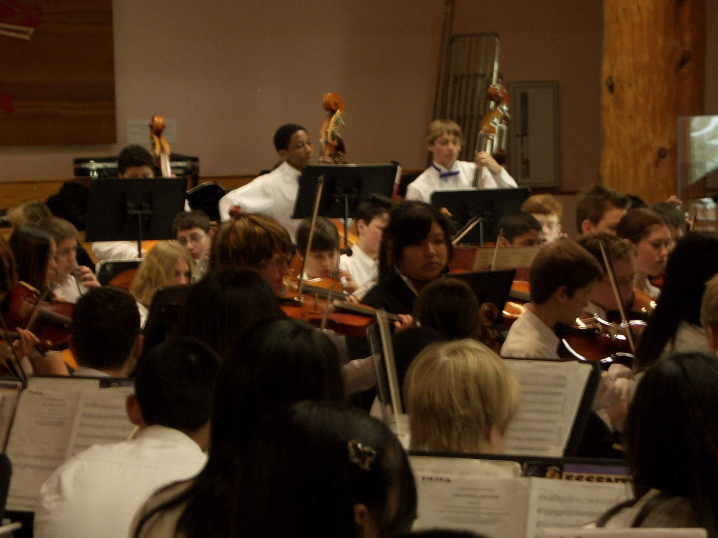 Orchestra pictures 051.jpg