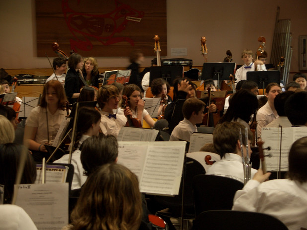 Performing with Other Orchestras.jpg