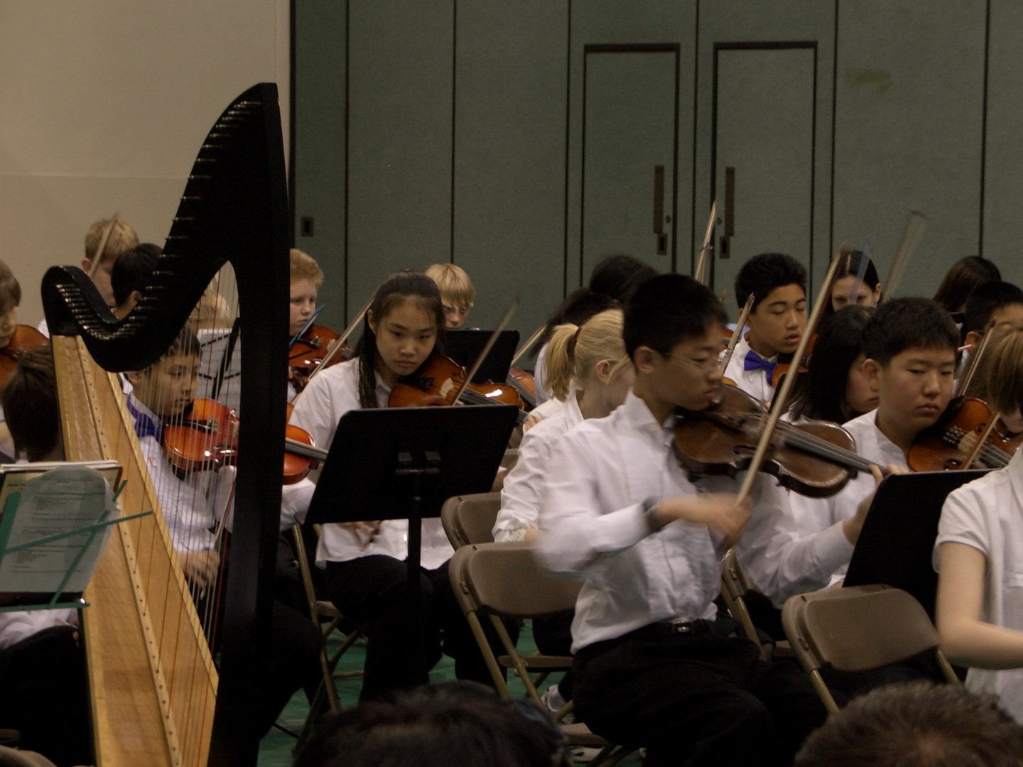 Orchestra pictures 010.jpg