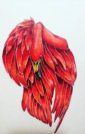 """""""Фламинго"""""""