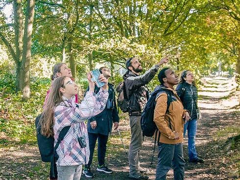 Weekend Walks in Nature - Wild Eindhoven