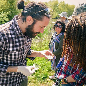 Group events in nature with Nuno Curado - Wild Eindhoven
