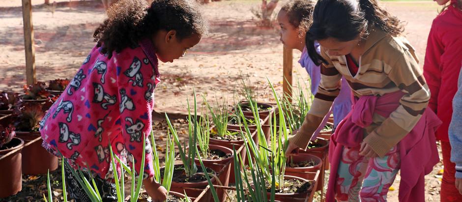 Escola Municipal faz ação de Educação Ambiental com foco em práticas sustentáveis em alimentação