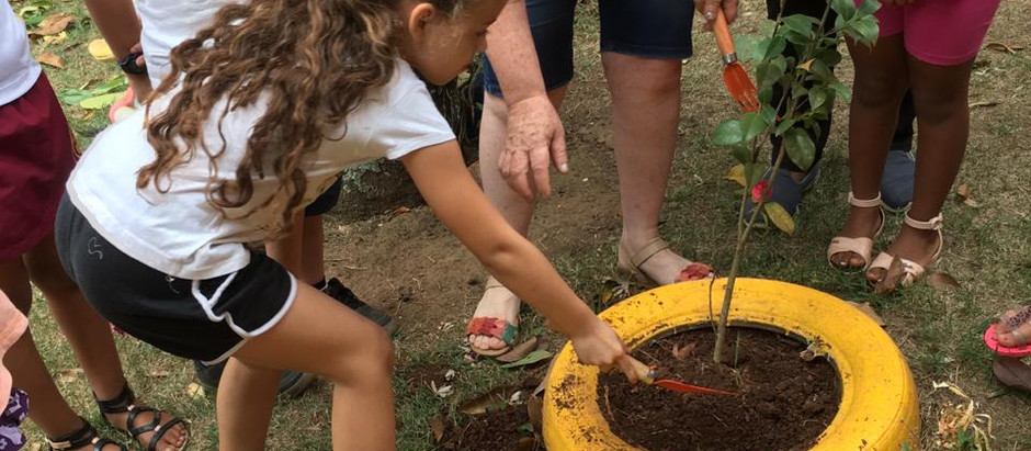 Alunos da rede pública municipal celebram Dia da Árvore com plantio de mudas