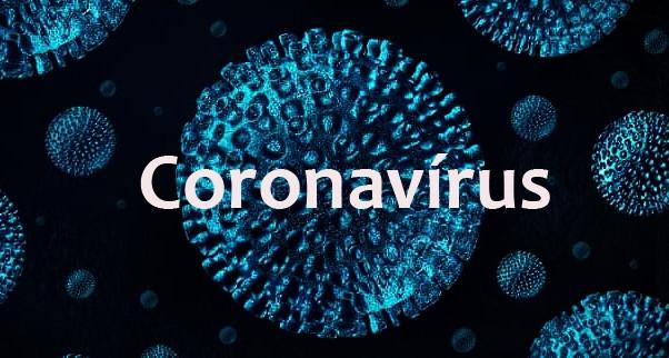 Corona Vírus não deve afetar mercado de flores em Holambra